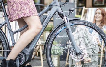 Kaufberatung: E-Bikes under 2000 Euro