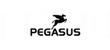 pegasus_kl