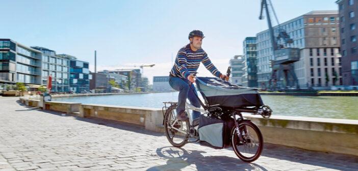 Hase Bikes: Modell  Pino